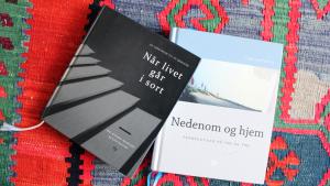 Udsættes - Litteraturkreds om sorg @ Salen | Ryslinge | Danmark